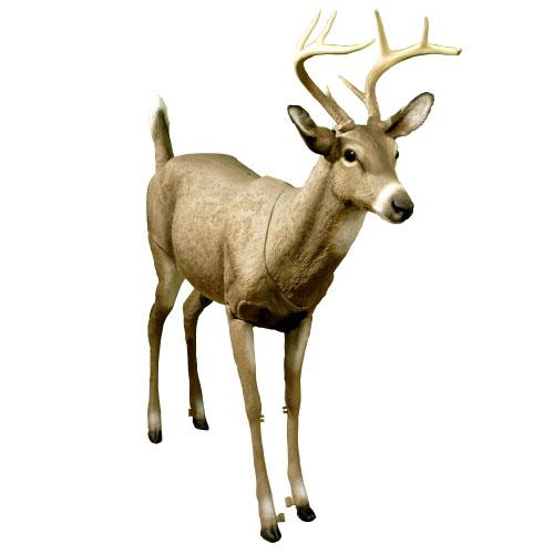 Bucky Jr Deer Decoy