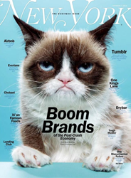 Grumpy Cat Makes New York Mag Cove rOct 2013