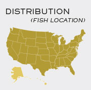 Crappie Fish - Locations in United States