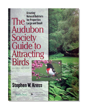 Attract More Songbirds to Your Property