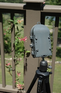Positioning Your BirdCam for the Best Backyard Bird Photography